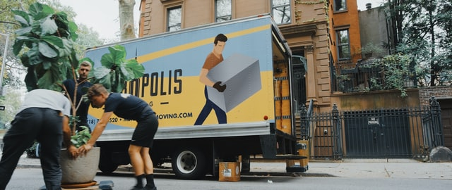 Reasons To Use A Professional Mover